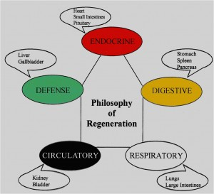 Sunrider Philosophy of Regeneration Diana Walker
